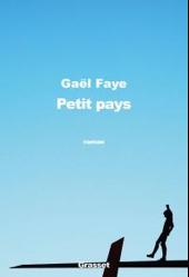 faye-gae%cc%88l-petit-pays
